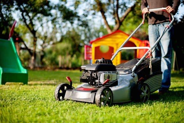 Comment entretenir et tondre sa pelouse afin qu'elle soit resplendissante ?