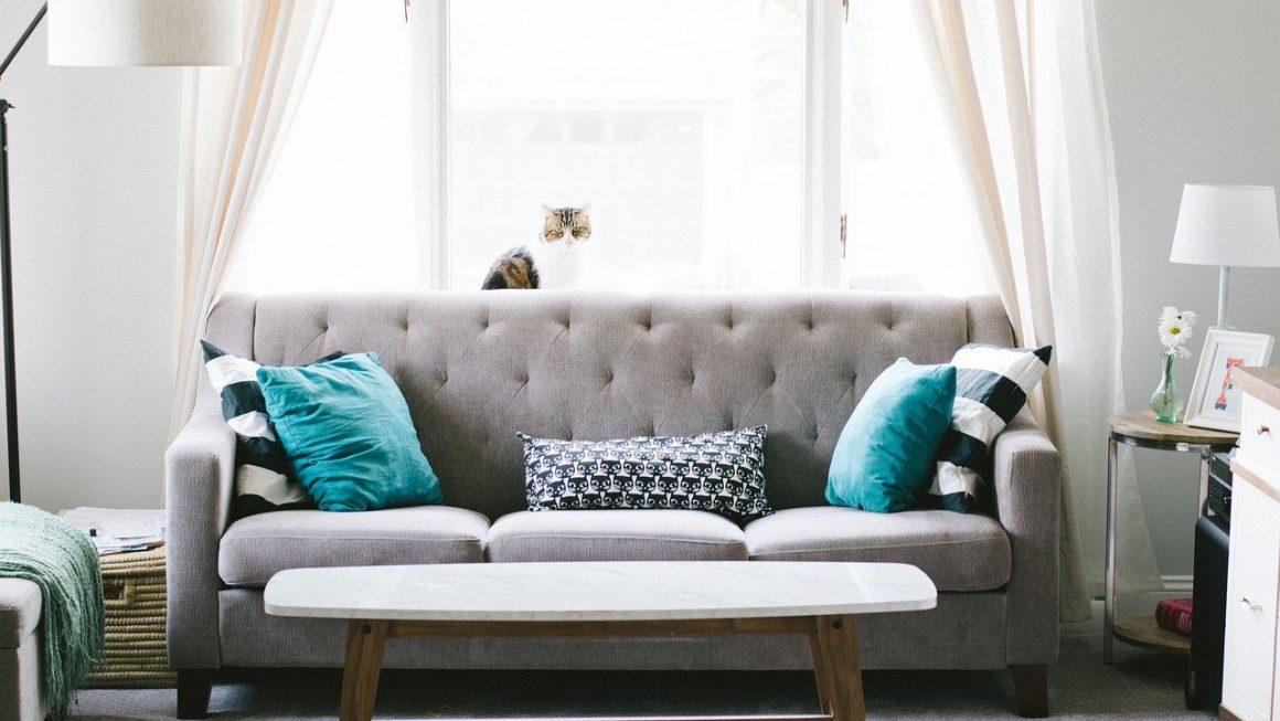 Comment choisir un canapé pour un salon de petite taille ?