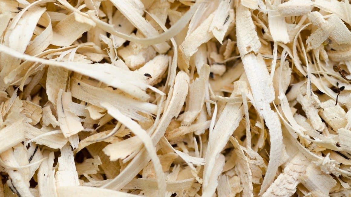 Les panneaux d'isolation en fibre de bois : le choix écologique et durable